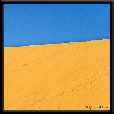 sable2.jpg