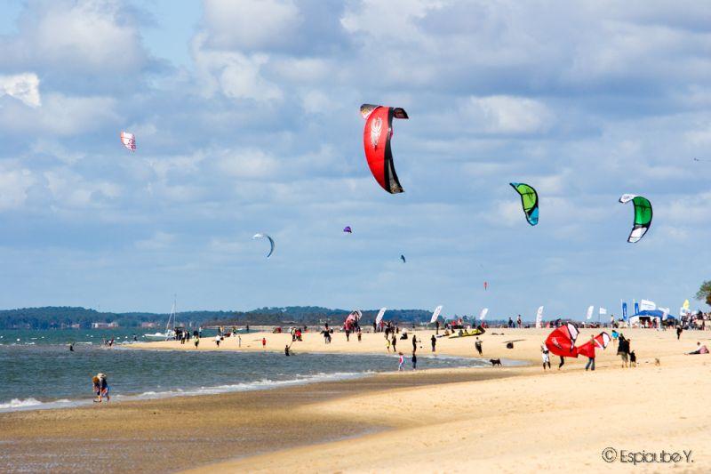 kite090401.jpg